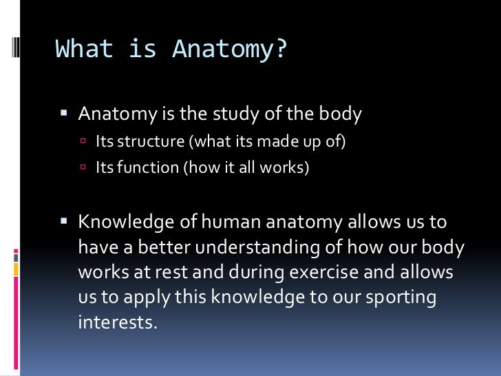 anatomy powerpoint, Human Body