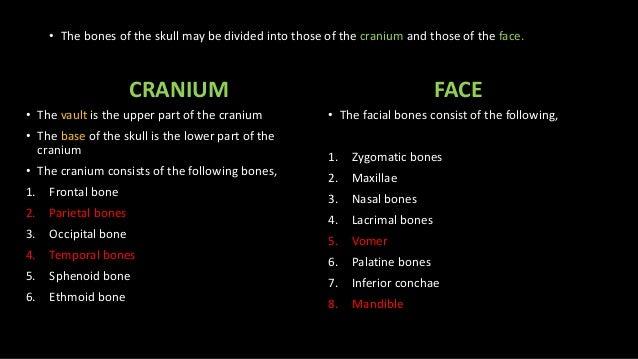 Anatomy skull anatomy dr.mohammed Slide 3