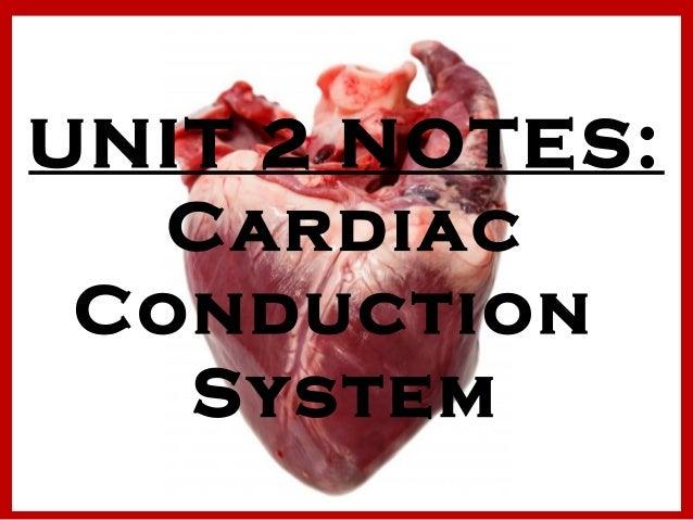 unit 2 anatomy Equine unit 2 - national ffa organization.
