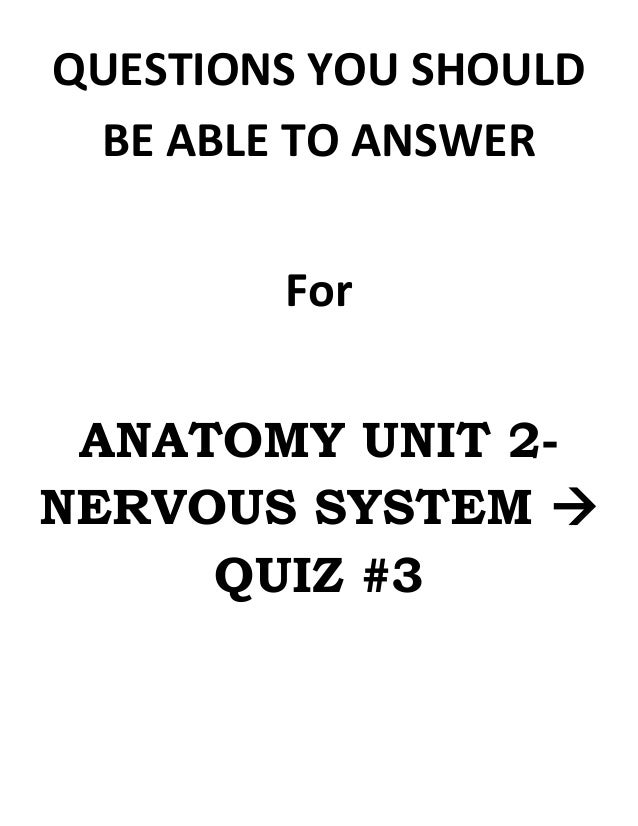 Anatomy unit 2 nervous system everything you need to know