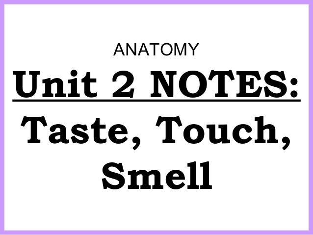 ANATOMY Unit 2 NOTES: Taste, Touch, Smell