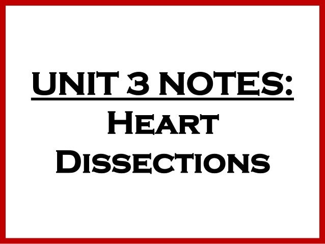 UNIT 3 NOTES: Heart Dissections