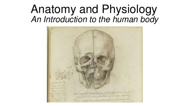 An introduction to human body
