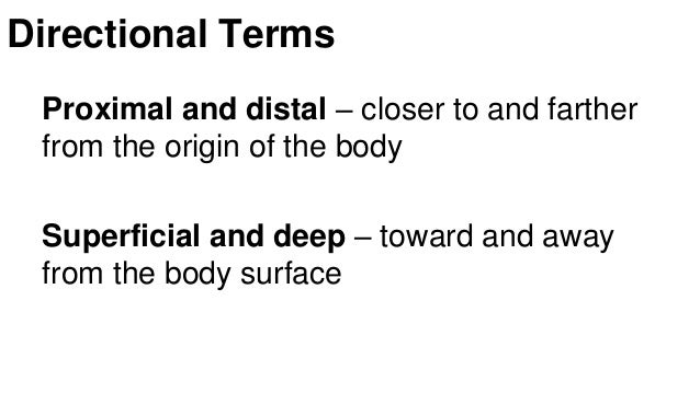 introduction to the human body Introduction to the human body / edition 9 the 9 th edition of tortora's introduction to the human body 8e provides basic content, focused design, and relevant connections about the essentials of anatomy and physiology.