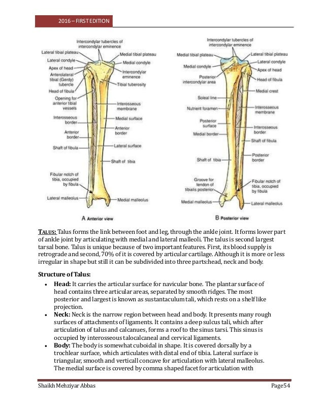 Anatomy vol 1 ( FOR B.P.M.T RADIOGRAPHY TECHNOLOGY 1ST YEAR)