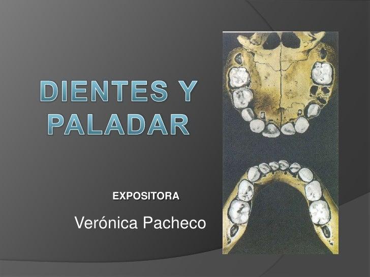 DIENTES Y PALADAR<br />EXPOSITORA<br />Verónica Pacheco<br />