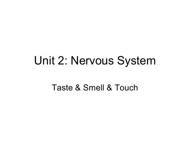 Unit 2: Nervous System Taste & Smell & Touch