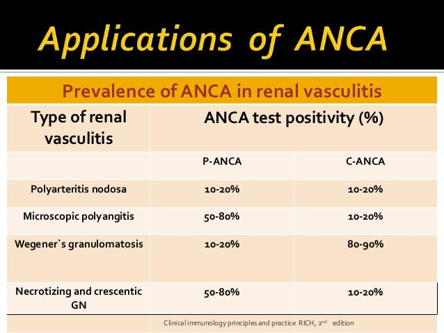 Anca City