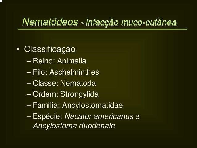 Nematódeos - infecção muco-cutânea Nematódeos infecção muco-cutânea• Classificação  – Reino: Animalia  – Filo: Aschelminth...