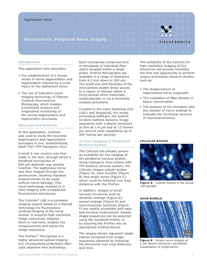 Application Note    Neuroscience: Peripheral Nerve ImagingIntroduction                                 Each microprobe com...