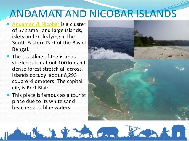 Travel to andaman nicobar islands for Andaman and nicobar islands cuisine