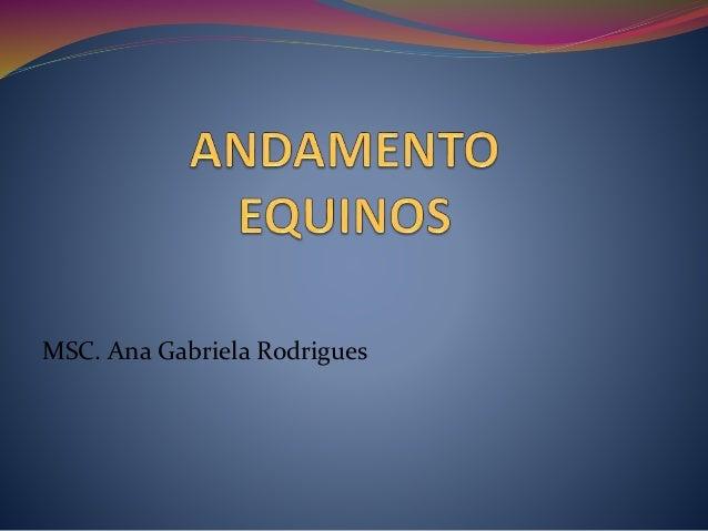 MSC. Ana Gabriela Rodrigues
