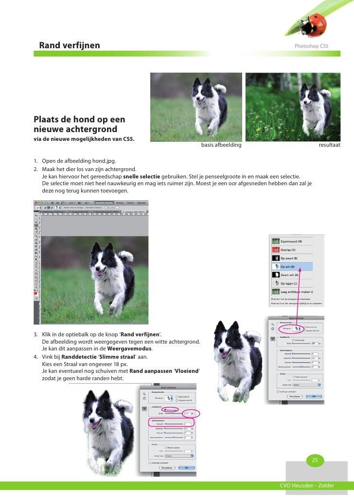 Rand verfijnen                                                                                        Photoshop CS5Plaats ...