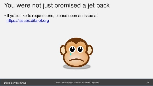 Content CoE and eSupport Services | ©2016 IBM CorporationDigital Services Group You were not just promised a jet pack • If...