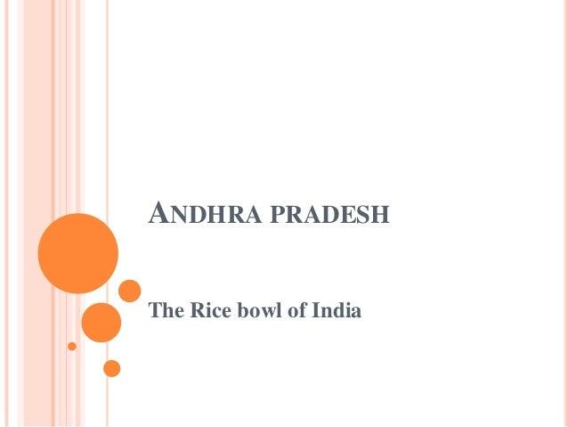 ANDHRA PRADESH The Rice bowl of India