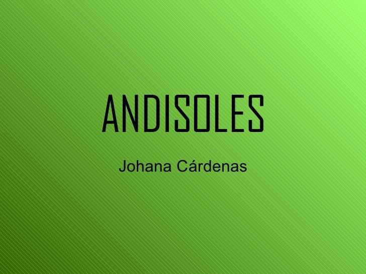 ANDISOLES Johana Cárdenas