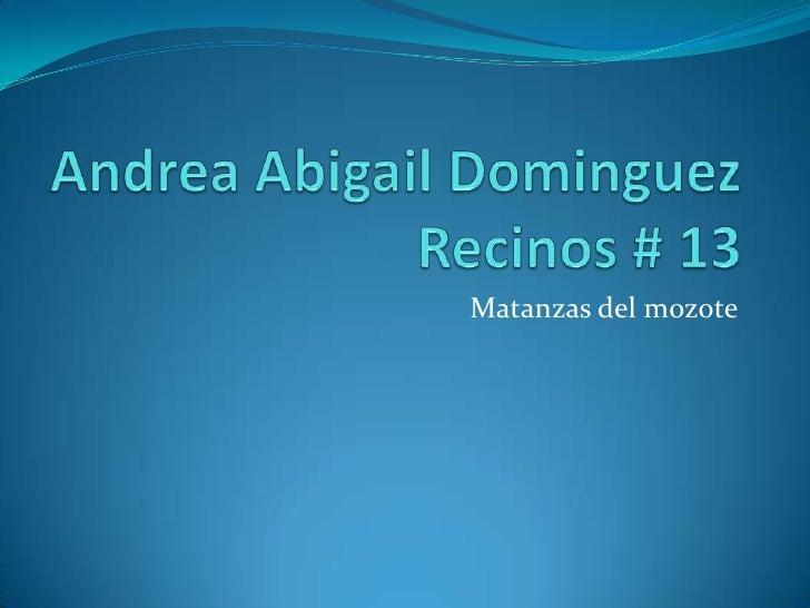 Andrea Abigail Dominguez Recinos # 13<br />Matanzas del mozote <br />