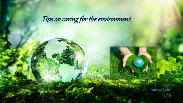 Tipsoncaringfor the environment. Andrea Cobo 2° B