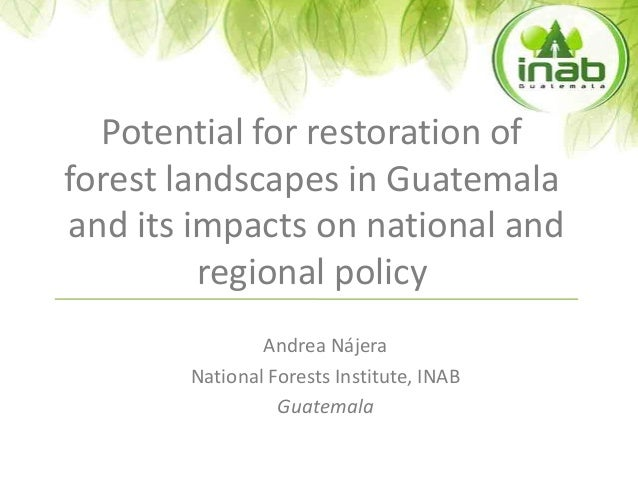 Potential for restoration of forest landscapes in Guatemala and its impacts on national and regional policy Andrea Nájera ...