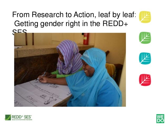 From Research to Action, leaf by leaf: Getting gender right in the REDD+ SES