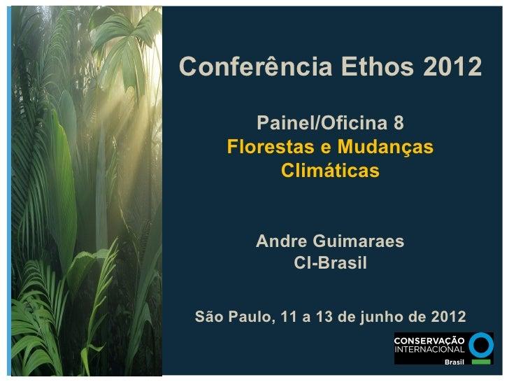 Conferência Ethos 2012        Painel/Oficina 8     Florestas e Mudanças          Climáticas        Andre Guimaraes        ...