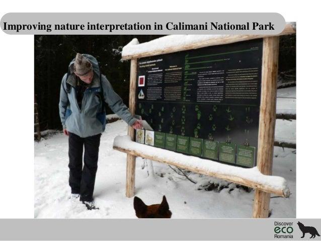 Improving nature interpretation in Calimani National Park