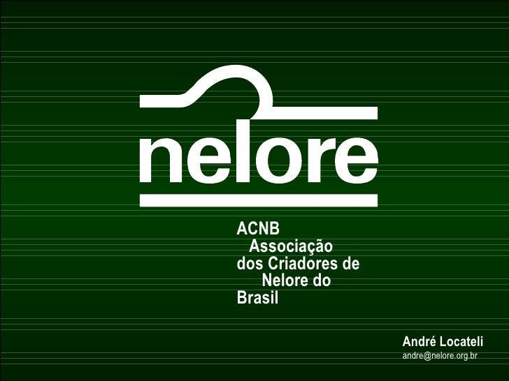 ACNB  Associação  dos Criadores de  Nelore do Brasil André Locateli [email_address]