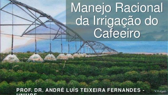 Manejo Racional da Irrigação do Cafeeiro  PROF. DR. ANDRÉ LUÍS TEIXEIRA FERNANDES -