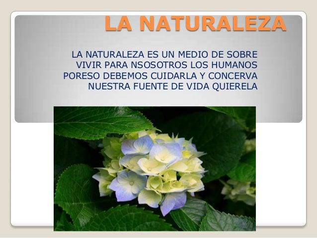 LA NATURALEZA LA NATURALEZA ES UN MEDIO DE SOBRE VIVIR PARA NSOSOTROS LOS HUMANOS PORESO DEBEMOS CUIDARLA Y CONCERVA NUEST...