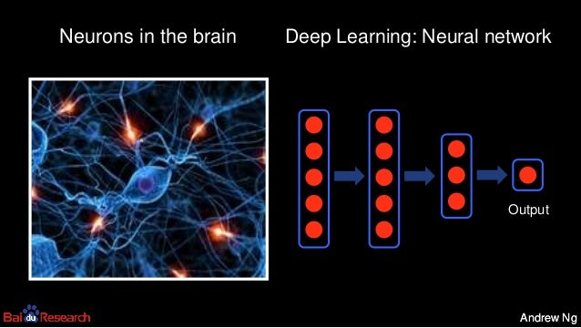 Andrew NgAndrew Ng Neurons in the brain Output Deep Learning: Neural network