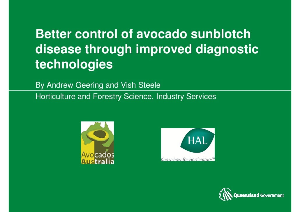 Better control of avocado sunblotch disease through improved diagnostic technologies By Andrew Geering and Vish Steele Hor...