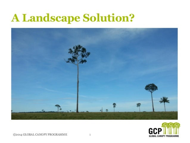 ©2014 GLOBAL CANOPY PROGRAMME 1©2014 GLOBAL CANOPY PROGRAMME A Landscape Solution?