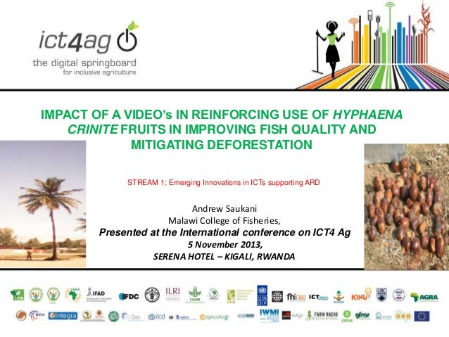 IMPACT OF A VIDEO's IN REINFORCING USE OF HYPHAENA CRINITE FRUITS IN IMPROVING FISH QUALITY AND MITIGATING DEFORESTATION S...