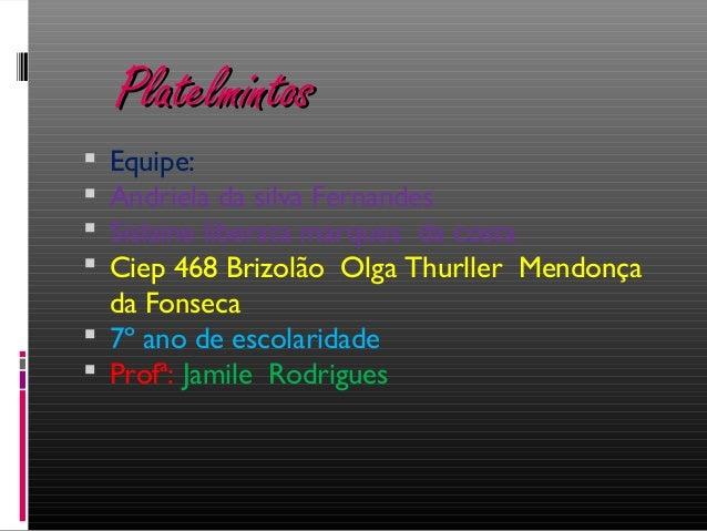 PlatelmintosPlatelmintos  Equipe:  Andriela da silva Fernandes  Sislaine liberata marques da costa  Ciep 468 Brizolão ...