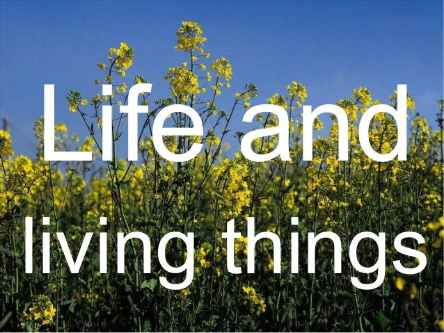 Life andliving things