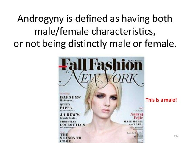 Androgyny is defined as having both male/female characteristics, or not being distinctly male or female.  This is a male! ...