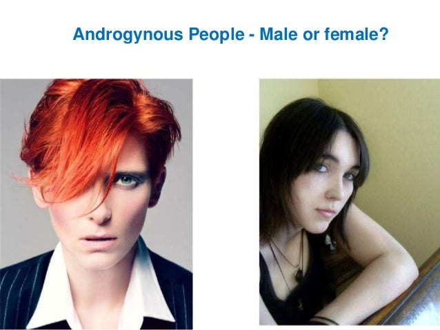 Androgynous People - Male or female?  347