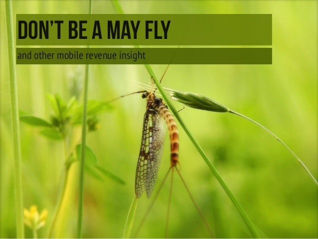 DON'T BE A MAY FLY and other mobile revenue insight
