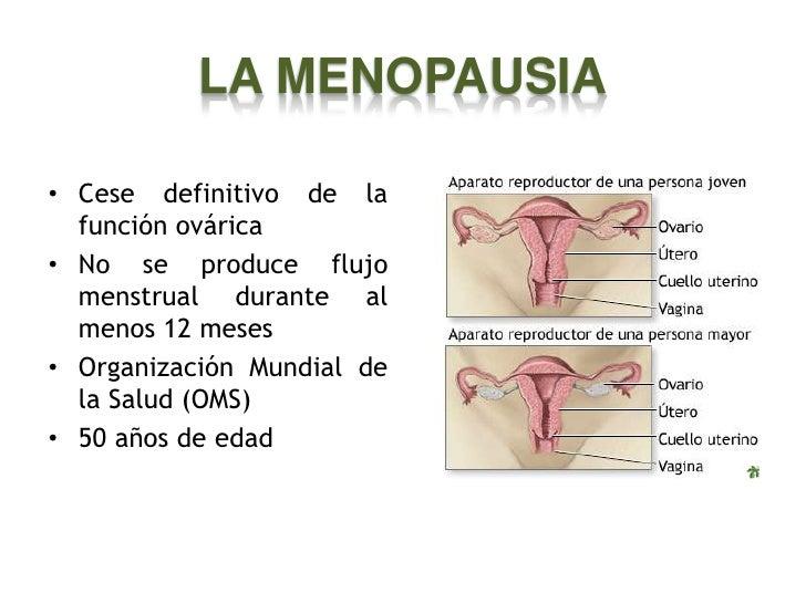 Andropausia y menopausia