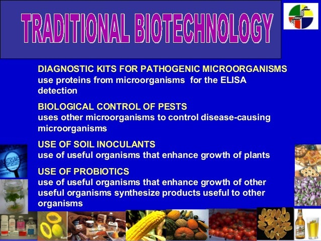 Traditional versus modern biotechnology (exam 2 coverage).