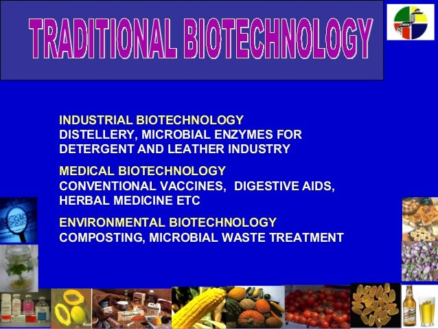 Essay on biotechnology: definition, advancement and application.