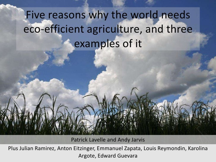 Five reasons why the world needs eco-efficient agriculture, and three examples of it<br />Patrick Lavelle and Andy Jarvis<...