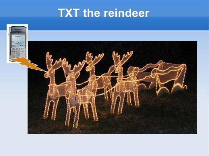 TXT the reindeer