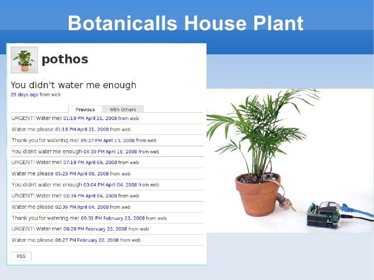 Botanicalls House Plant
