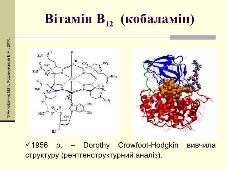 Вітамін В 12   (кобаламін) <ul><li>1956 р. – Dorothy Crowfoot-Hodgkin вивчила структуру (рентгенструктурний аналіз). </li>...