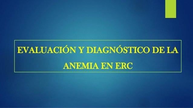 Estudio de la anemia de origen renal J.E. Toblli et al / Dial Traspl. 2009;30(3):104-108