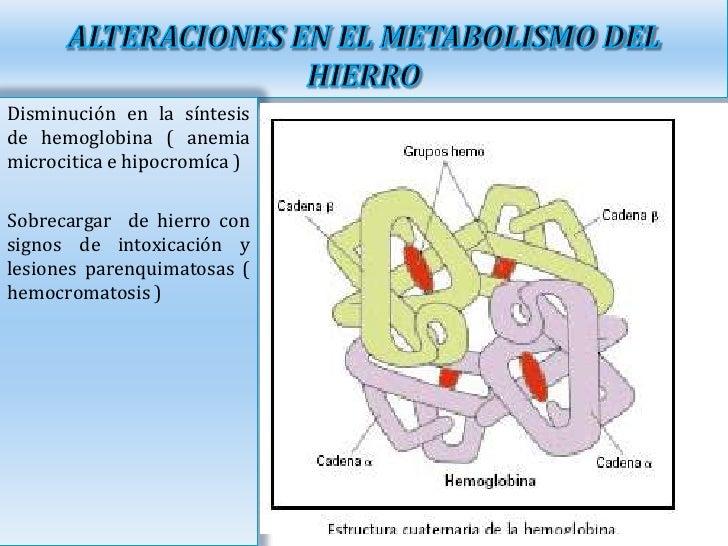 Anemia ferropenica y metabolismo del hierro