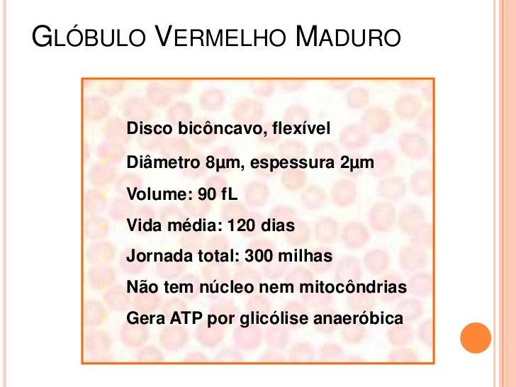 Anemia hemolitica Slide 3