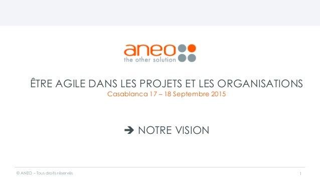 ÊTRE AGILE DANS LES PROJETS ET LES ORGANISATIONS Casablanca 17 – 18 Septembre 2015  NOTRE VISION © ANEO – Tous droits rés...