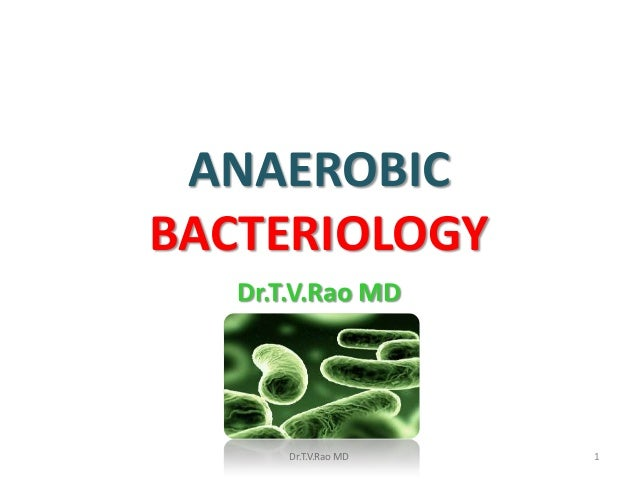 ANAEROBICBACTERIOLOGY   Dr.T.V.Rao MD       Dr.T.V.Rao MD   1